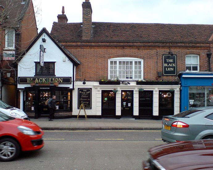 The Black Lion Epping Essex Pub Review 690x550 - The Black Lion, Epping, Essex - Pub Review