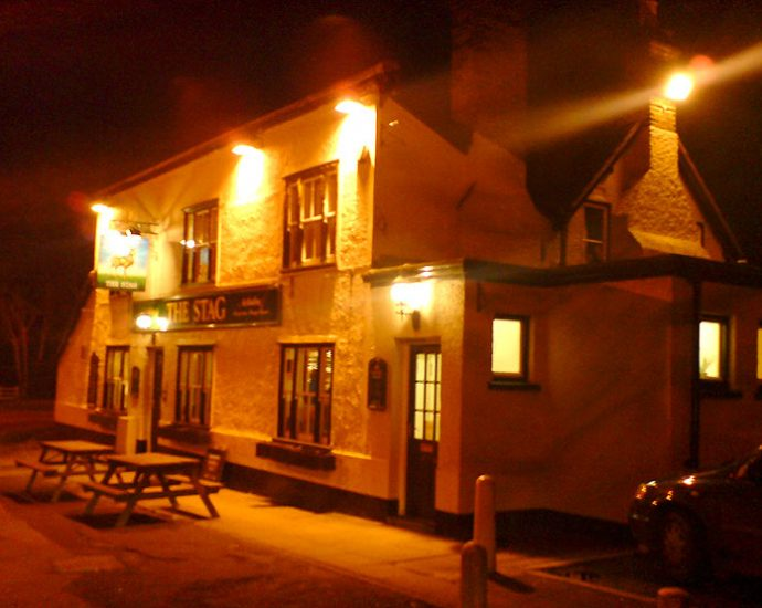 The Stag Ongar Essex Pub Review 690x550 - The Stag, Ongar, Essex - Pub Review