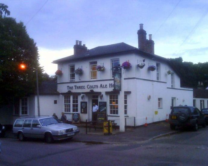 The Three Colts Buckhurst Hill Essex Pub Review 690x550 - The Three Colts, Buckhurst Hill, Essex - Pub Review